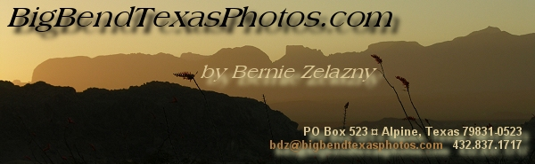 Click to return to the home page - BigBendTexasPhotos.com by Bernie Zelazny, PO Box 523, Alpine, TX 79831-0523, 432.837.1717